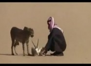 Saudi Arabian hunter stalks desert Gazelle with pet Cheetah