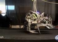 Darpa Cheetah Robot beats Land Speed Record