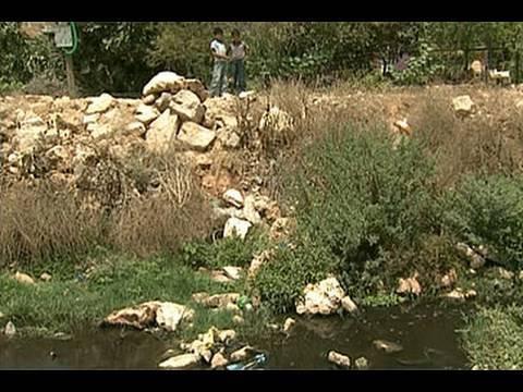 Israeli Taliban Torch Palestinian Girls' School, Destroy Olive Trees