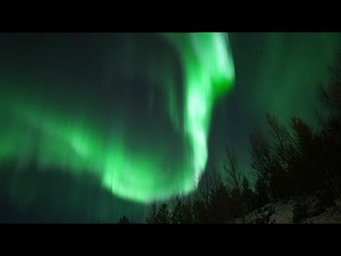 Nature's Fireworks:  The Northern Lights in Troms, Norway