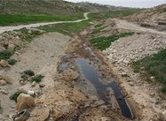 Palestine Environmental authority warns against Israeli toxic waste dumping