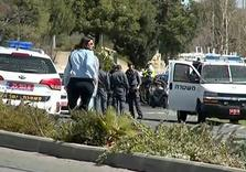 Palestinian from Occupied E. Jerusalem injures 5 Israeli Police in Car Attack attack