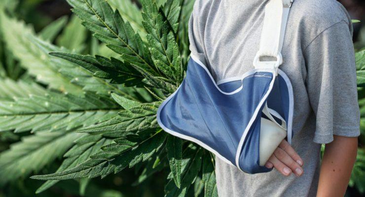 Can Marijuana heal Broken Bones?