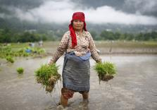 Does Paris Climate Accord hang Women, Indigenous Peoples out to Dry?