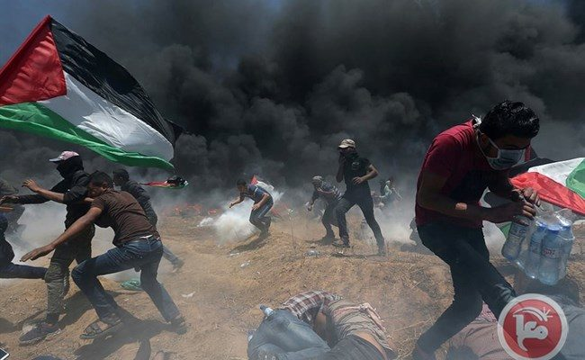 "Can Palestinians be Killed?  Can Israelis Kill them? Or do they only ""Die""?"