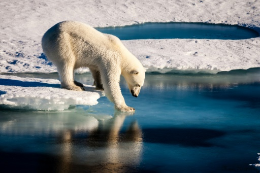 Today's Abnormally hot Arctic Temperatures not observed since Time of Christ
