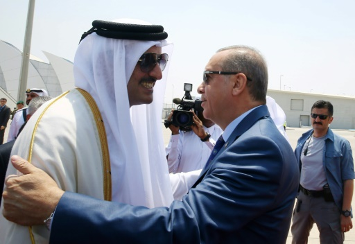 Qatar Emir Supports Crisis-Hit Turkey with Visit, Pledges $15 bn in New Investment