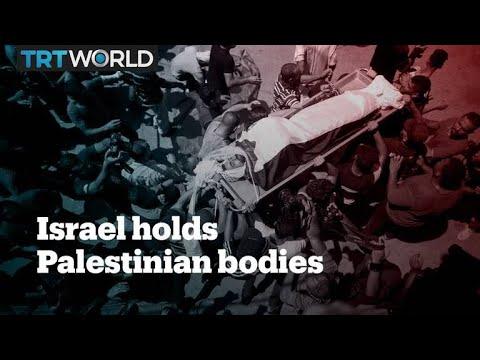 The 'Desaparecidos' of Palestine: Israel Escalates War on the Dead