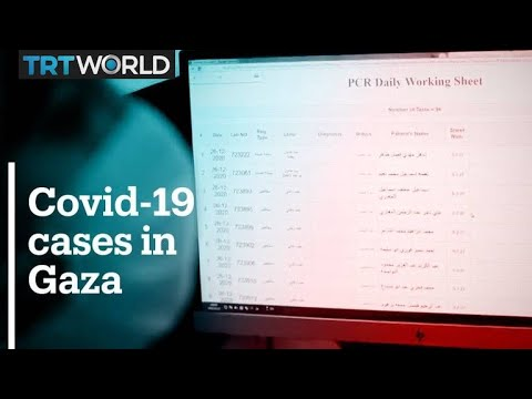 Confronting Total Collapse in Israeli-Occupied Gaza: Division and COVID-19