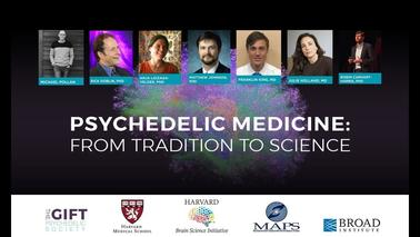In our Time of Insurrection and Divisive Violence, can Psychedelics help in Peace-Building?