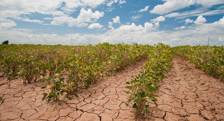 Why the Current Historic Drought in the Southwest May be the New Normal