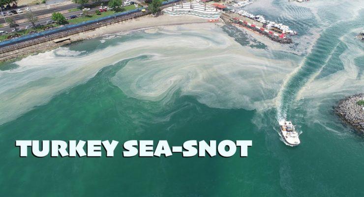 Turkey's Night of the Living Sea Snot: Global Heating, Industrial Pollution Endanger Marmara Sea