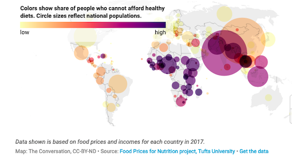 40% of the World's People, 3 billion Souls, cannot Afford a Healthy Diet