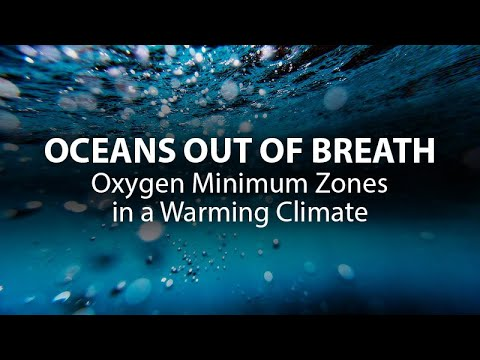 Climate Emergency is Driving Ocean's Dead Zones, which emit more and more Nitrous oxide, a super powerful greenhouse gas