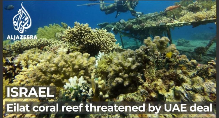 """Israeli Youth Protest Israel-UAE Oil Pipeline that Endangers Climate, Key Coral Reefs: The Dark Side of """"Abraham Accords"""""""